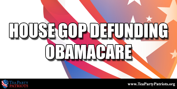 House GOP Defund Obamacare Thumb