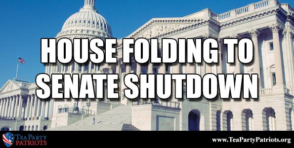 House Folding Thumb